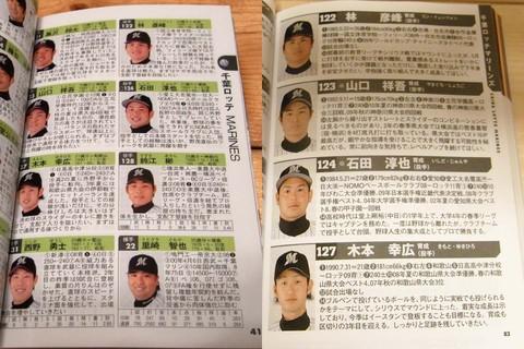 Nikkan_shube